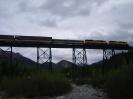 Alaska 2009 - Tag11